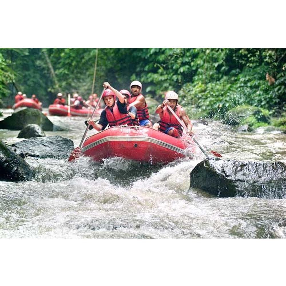 Contribution to our White River Rafting in Bali AED 500