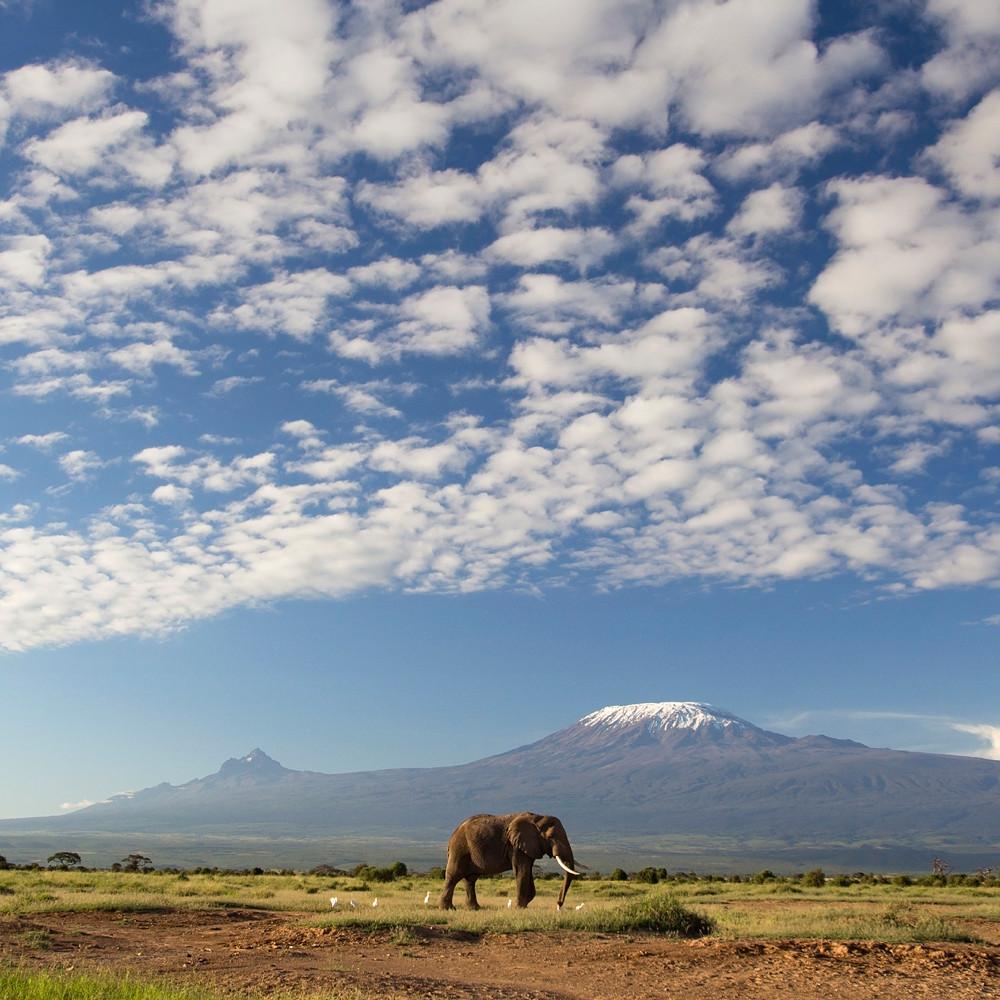 Contribution to Honeymoon Suite in Tanzania