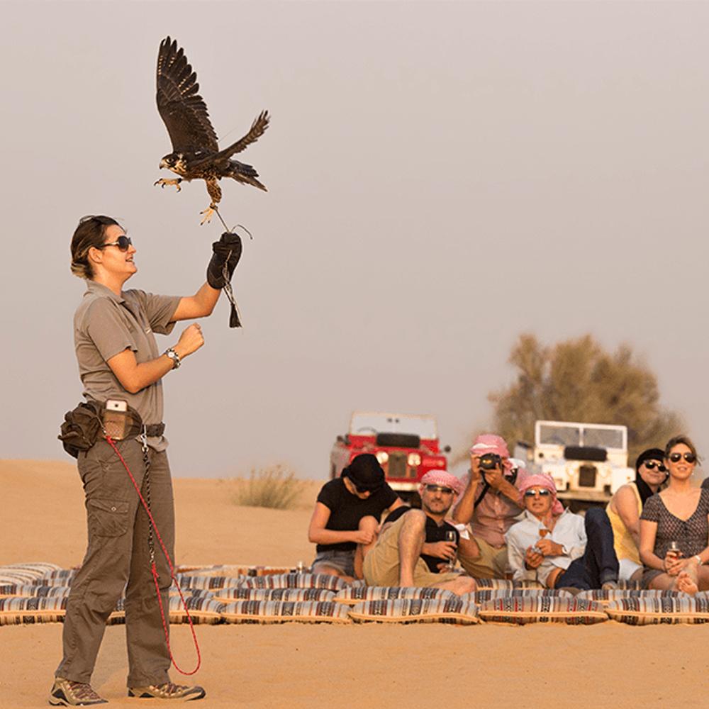 Heritage Falconry & Wildlife Safari - Child (5-11yo)