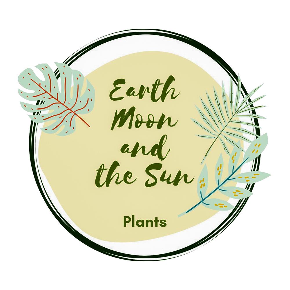 Earth Moon and the Sun | WonderGreen.AE